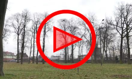 Komu zależy na opóźnieniu rewitalizacji Parku Staszica w Krzyżu?